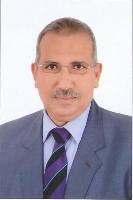 الشعب المصري يجهض مخطط الاحتلال المدني